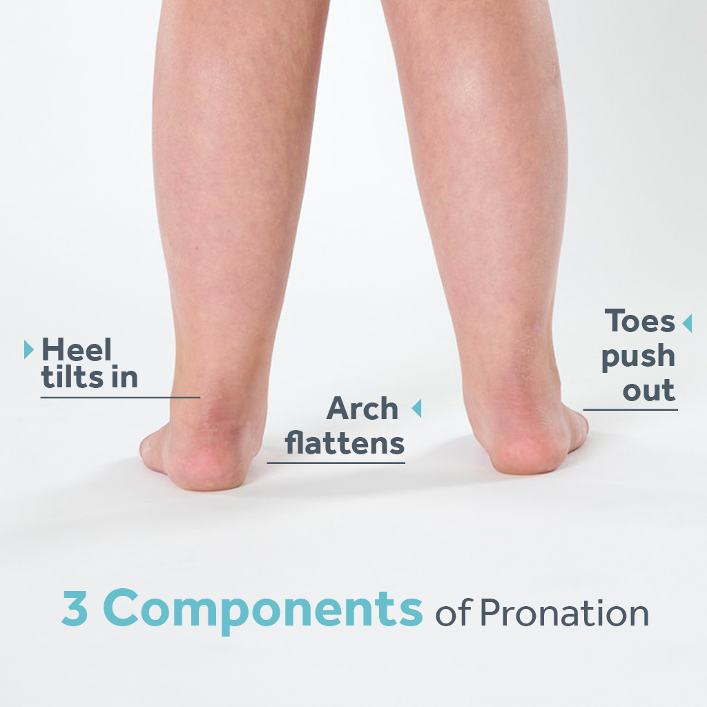 Explanation of three components of pronation